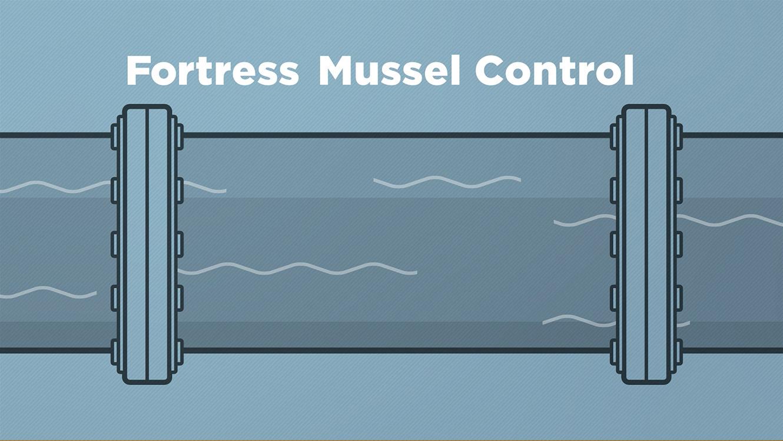 FortressMC_Illustration_02